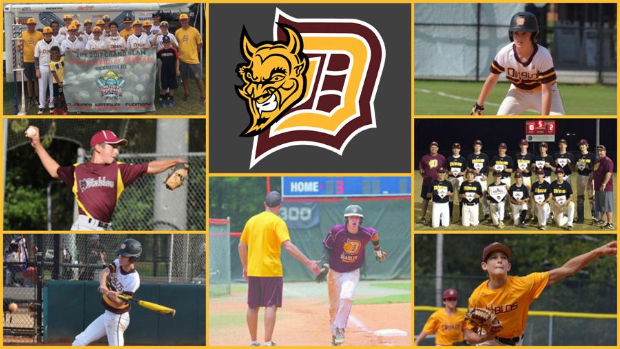 Diablos Travel Teams | DSB | Dunwoody Senior Baseball