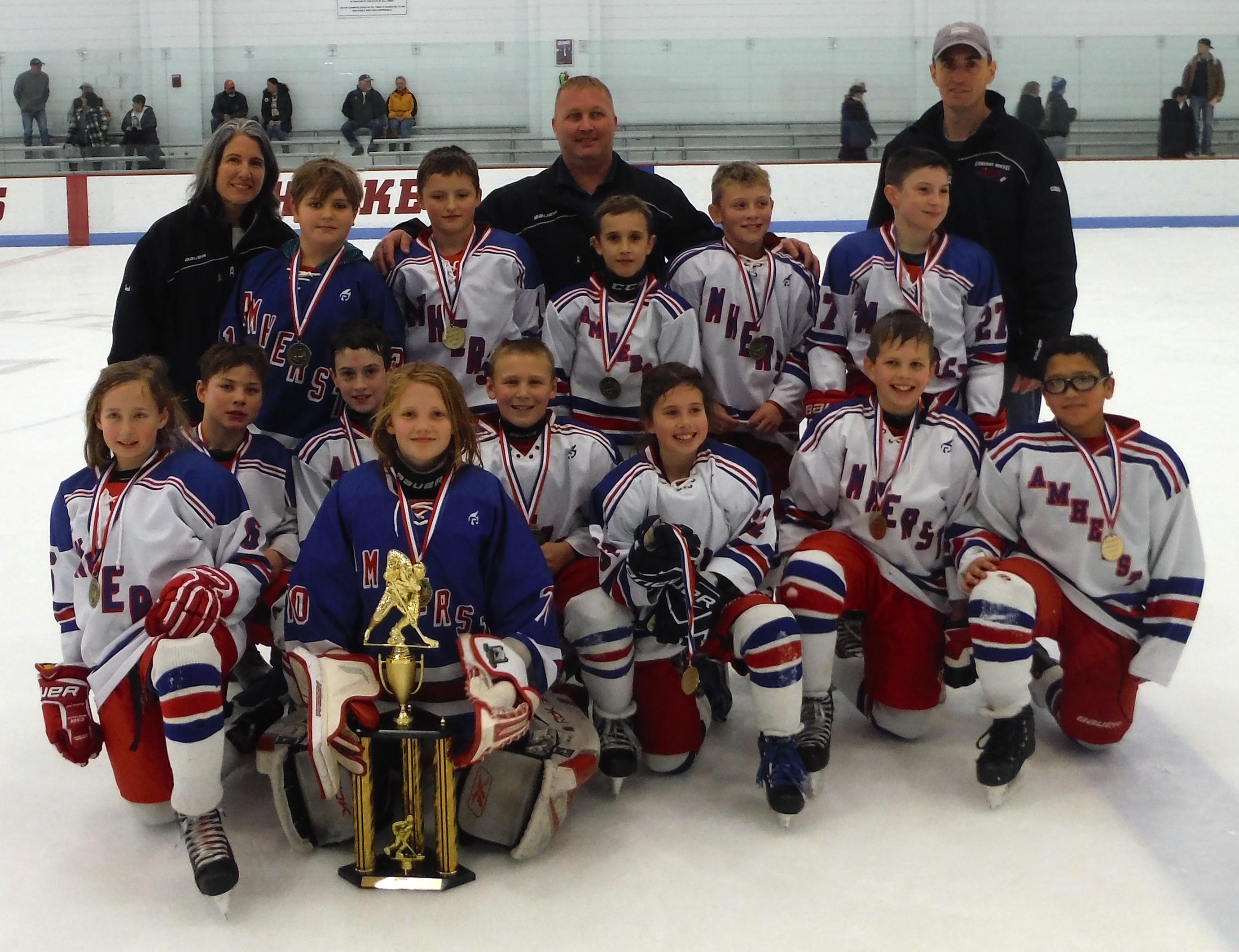 Amherst Hockey Association