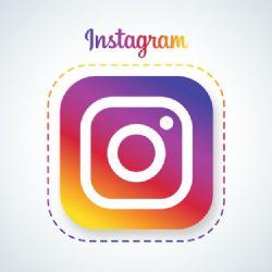 Huskies Official Instagram