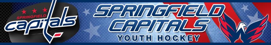 Springfield Capitals Hockey, Hockey, Goal, Rink