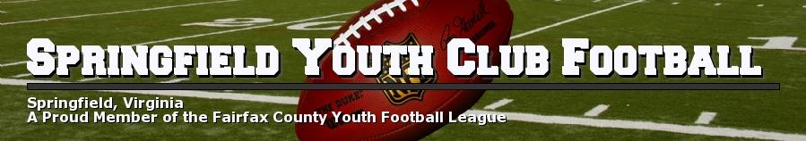 Springfield Youth Club Football, Football, Point, Field