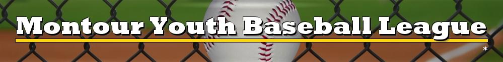 Montour Youth Baseball League, Baseball, Run, Field