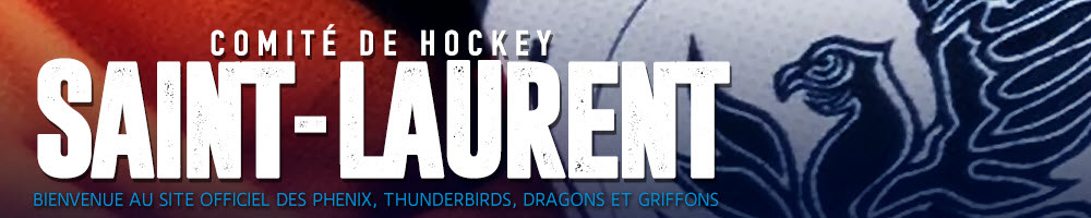Hockey Saint Laurent, Hockey, Goal, Rink