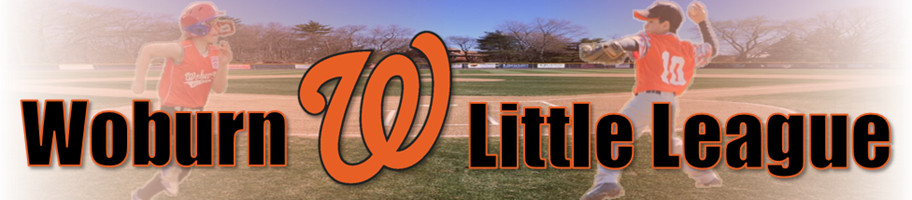 Woburn Little League, Baseball, Run, Field