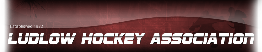 Ludlow Hockey Association, Hockey, Goal, Smead Skating Arena