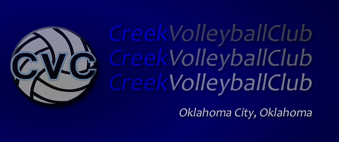 Creek Volleyball Club, Volleyball, Goal, Court
