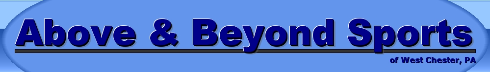 Above & Beyond Sports LLC., Multi-Sport, Goal, Field