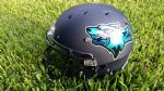 Fishhawk Wolfpack , Football