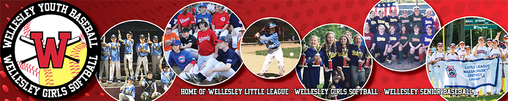 Wellesley Little League, Baseball, Runs, Field