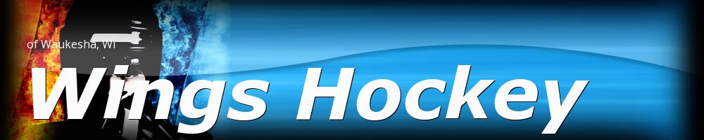 Wings Hockey Co-Op, Hockey, Goal, Rinks