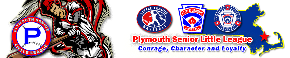 Plymouth Senior League, Baseball, Run, Field
