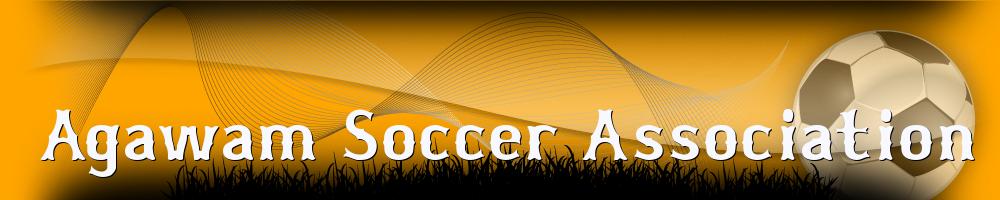 Agawam Soccer, Soccer, Goal, Field