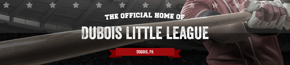 DuBois Little League, Baseball, Run, Field