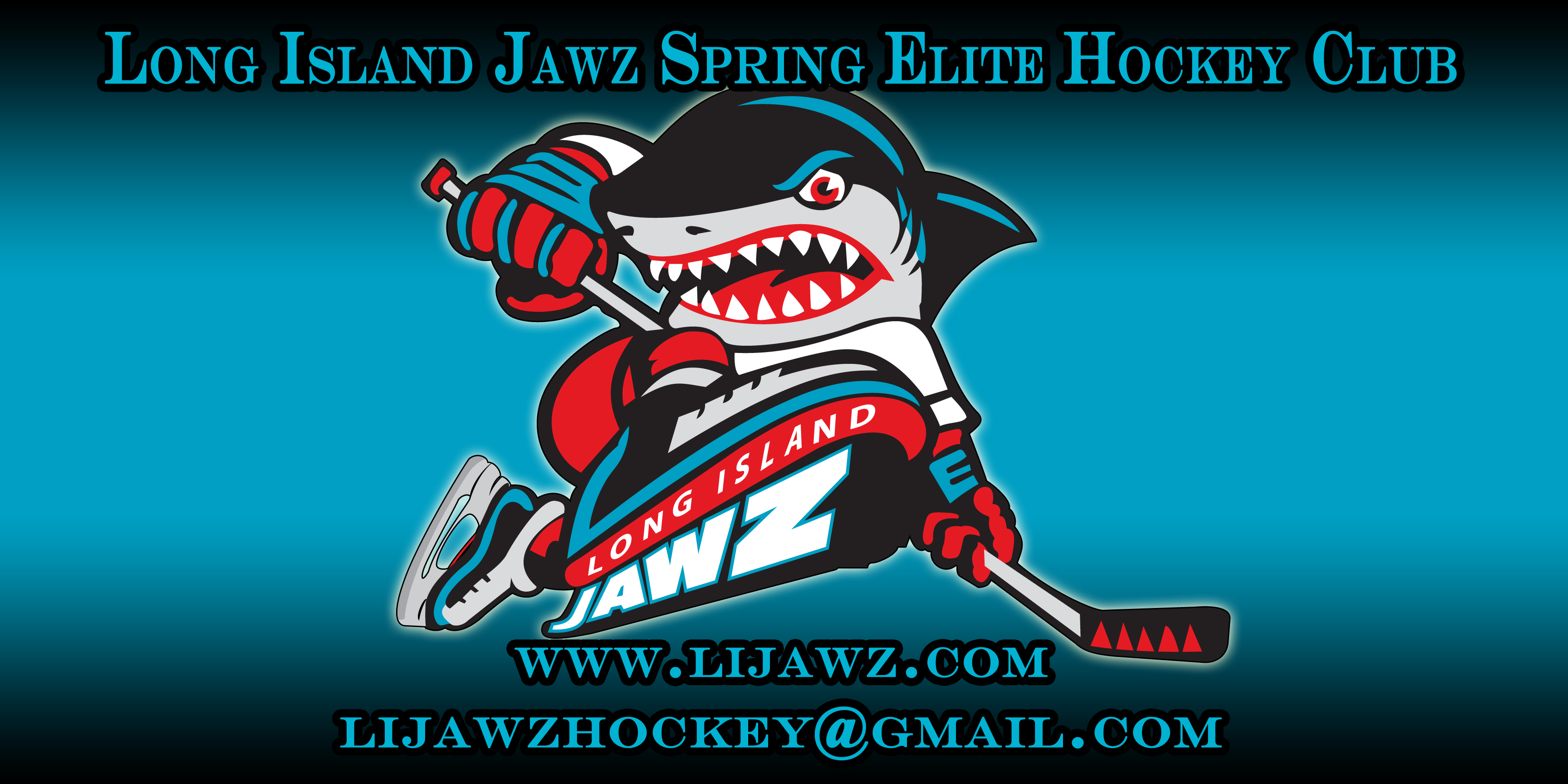 Long Island Jawz Spring Elite Hockey Club, Hockey, Goal, Rink