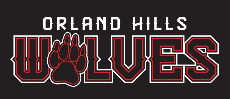 Orland Hills Youth Association, Baseball, Run, Field