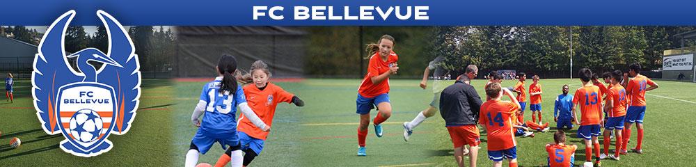 FC Bellevue, Soccer, Goal, Field
