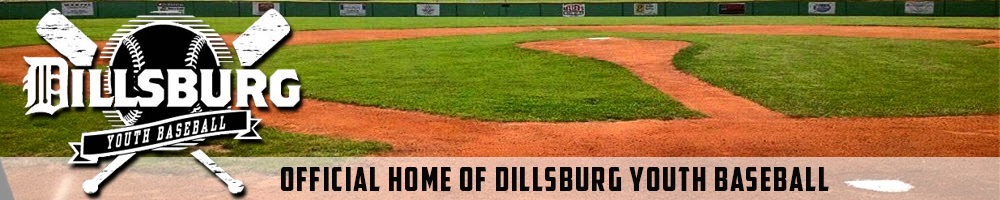 Dillsburg Youth Baseball, Baseball, Run, Field