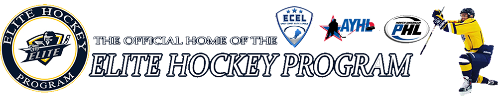 Elite Hockey AAA, Hockey, Goal, Rink