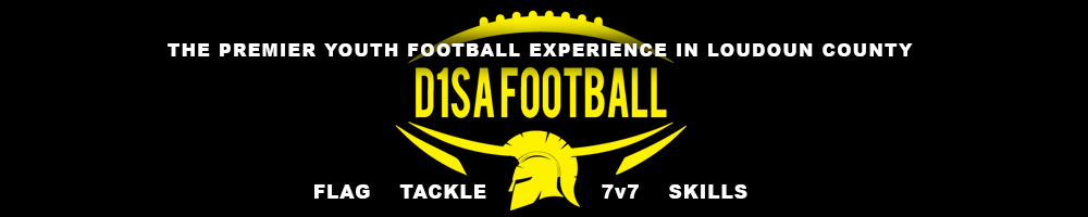 D1SA Spartans Youth Football, D1SA Football, Goal, Field