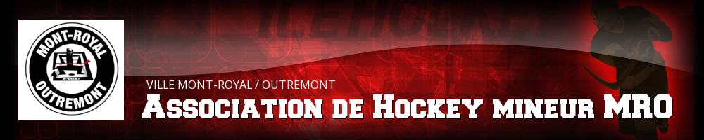 Association de hockey mineur MRO, Hockey, Goal, Rink