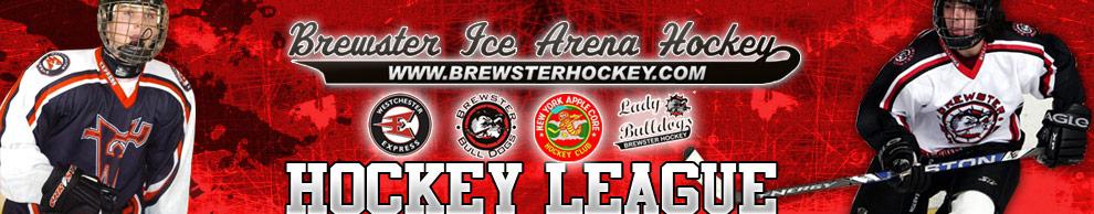 Brewster Hockey, Hockey, Goal, Brewster Ice Arena