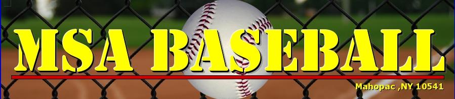 MSA BASEBALL, Baseball, Run, Field
