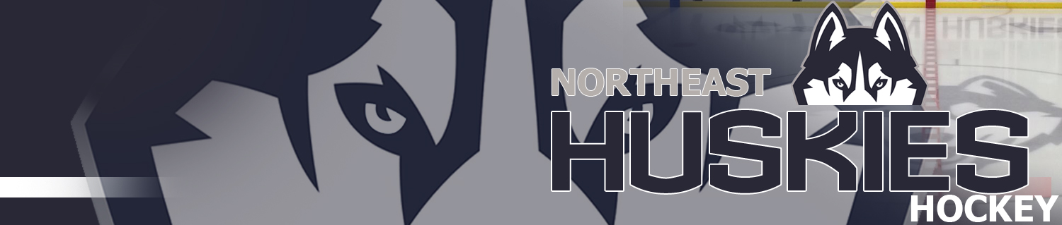 Northeast Youth Hockey Association Huskies, Hockey, Goal, Ice Rink