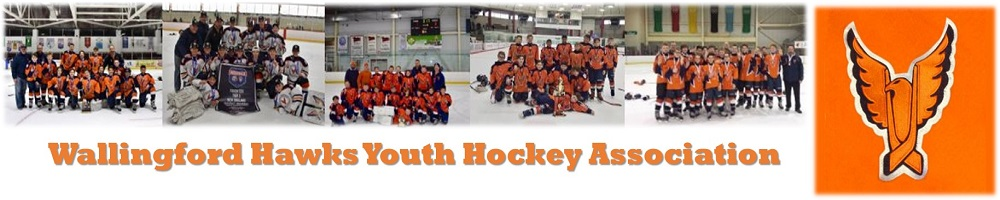 Wallingford Hawks Youth Hockey Assoc, Hockey, Goal, Rink