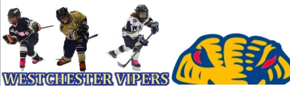 Westchester Vipers Hockey Association, Hockey, Score, Rink
