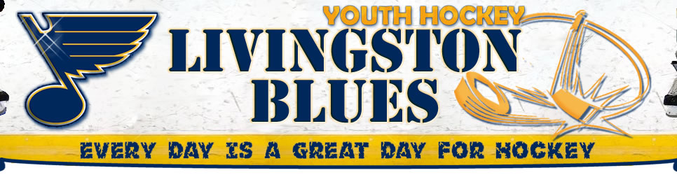 Livingston Blues Youth Hockey, Hockey, Goal, Rink