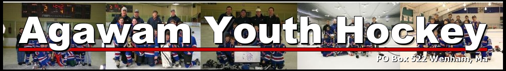 Agawam Youth Hockey, Hockey, Goal, Rink