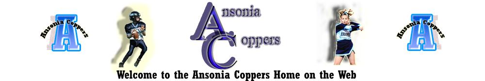 Ansonia Youth Football & Cheer, Inc., Football/Cheerleading, Goal, Nolan Field