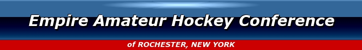 Empire Amateur Hockey Conference, Hockey, Goal, Rink