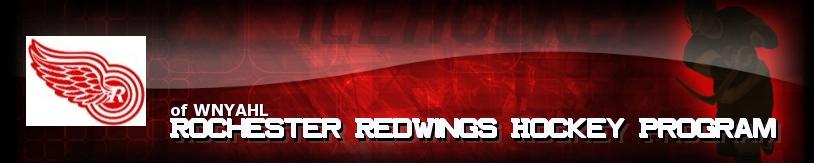 Rochester RedWings Hockey Program, Hockey, Goal, Rink