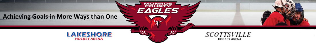 Monroe County Youth Hockey, Hockey, Goal, Rink