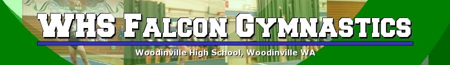 WHS Falcon Gymnastics, Gymnastics, Goal, Field