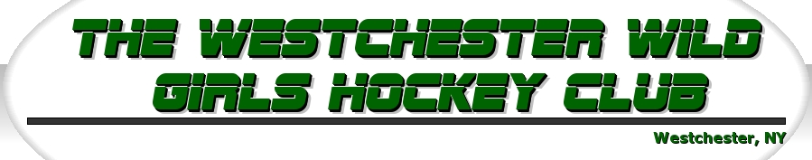 The Westchester Wild, Hockey, Goal, Rink