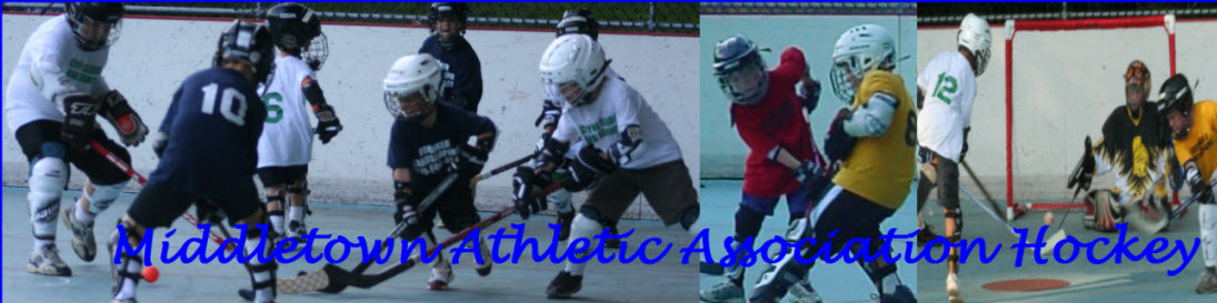 Middletown Athletic Association Hockey, Hockey, Goal, Rink