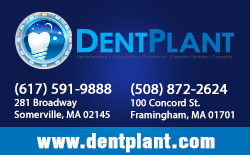 Dent Plant