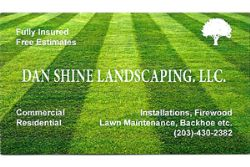 Dan Shine Landscaping LLC