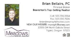 Meadows Group - Brian Bellairs