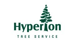 Hyperion Tree