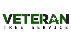Veteran Tree Service - Rob Ziegler