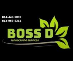 Boss D Landscape