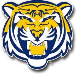 Lions Football Club (LFC)