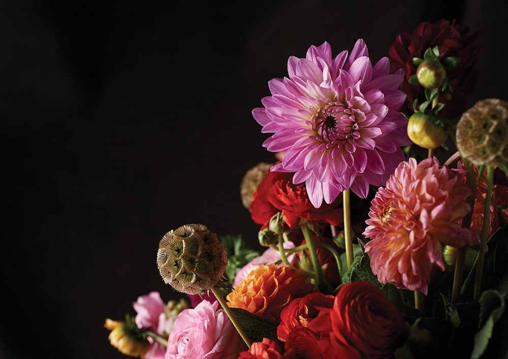 A bouquet of fall-toned flowers