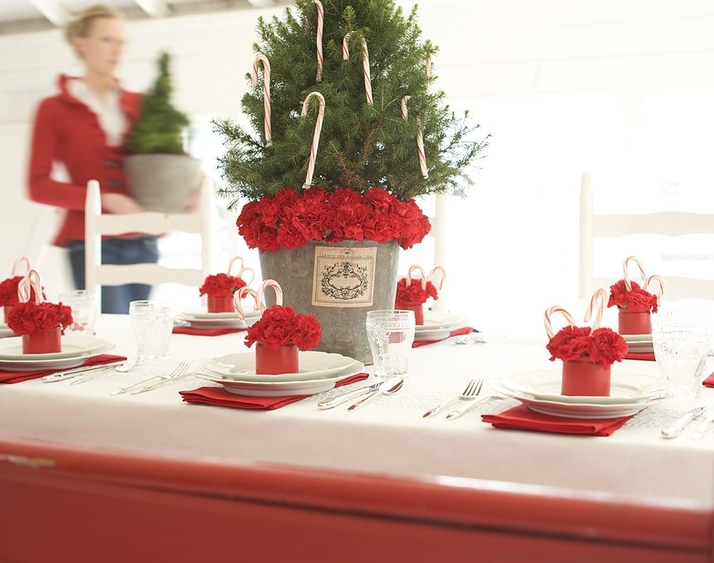 A classic white-and-red table set for Christmas