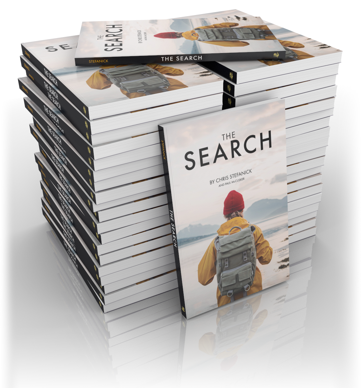 The Search (Case of 40) - Chris Stefanick and Paul McCusker