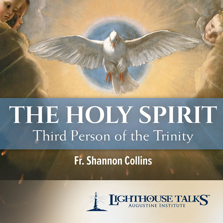 The Holy Spirit: Third Person of the Trinity - Fr. Shannon Collins