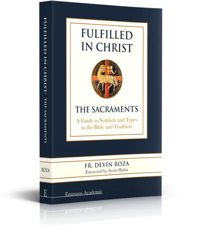 Fulfilled in Christ: The Sacraments (Hardcover) - Book - Fr. Devin  Roza